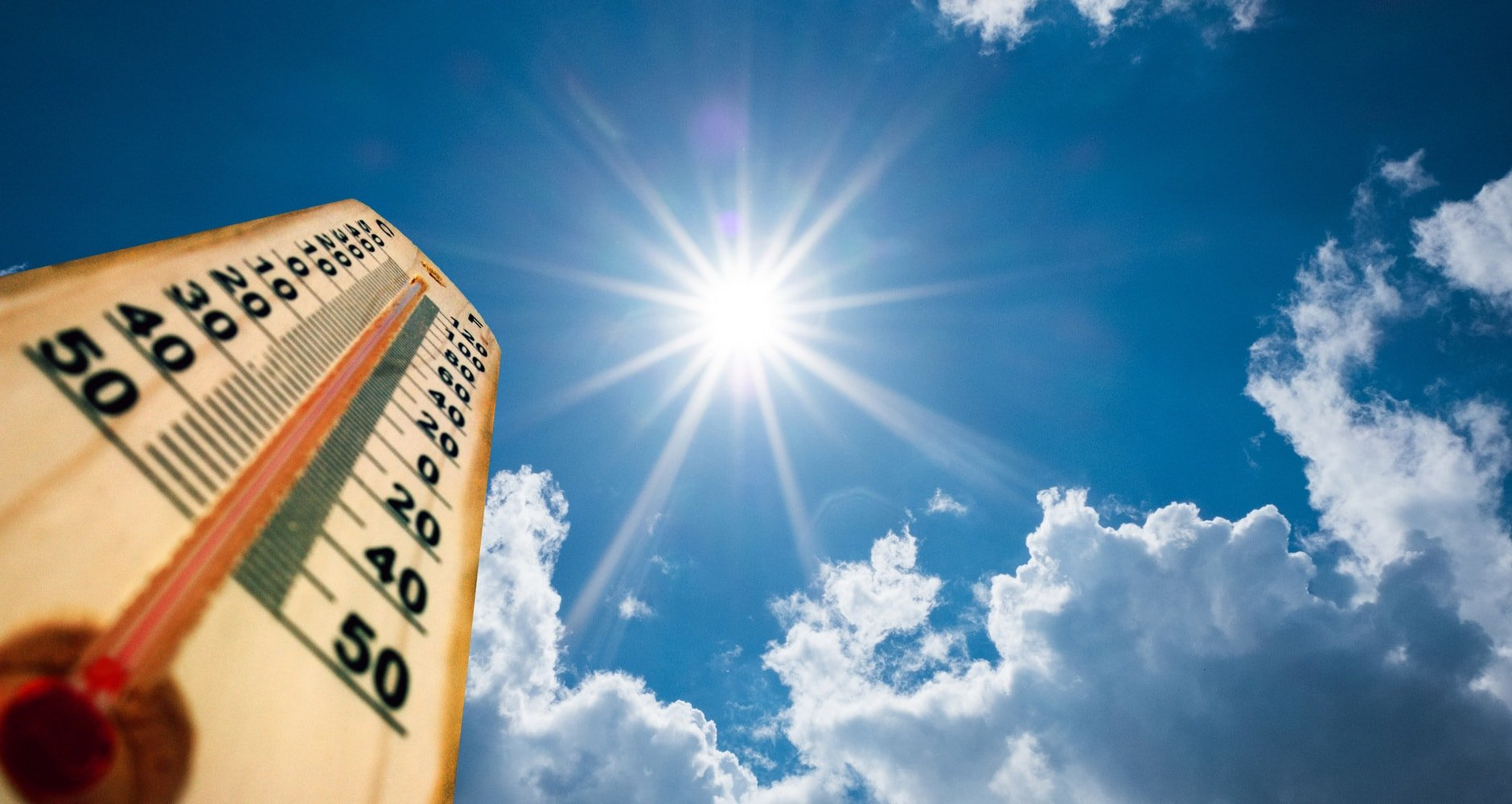Summer Heat image